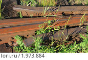 Купить «Элемент железной дороги», эксклюзивное фото № 1973884, снято 23 июня 2010 г. (c) Анатолий Матвейчук / Фотобанк Лори