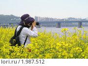 Купить «Женщина фотограф среди цветущего рапса фотографирует городской пейзаж», эксклюзивное фото № 1987512, снято 9 мая 2009 г. (c) Ольга Липунова / Фотобанк Лори