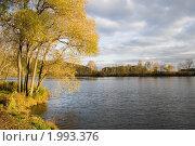 Купить «Осеннее дерево возле воды», фото № 1993376, снято 19 октября 2018 г. (c) Светлана Привезенцева / Фотобанк Лори