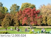 Купить «Осень. Парк Северного Речного Вокзала. Москва», фото № 2000024, снято 25 сентября 2010 г. (c) Екатерина Овсянникова / Фотобанк Лори
