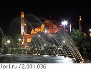 Купить «Ночной вид на Собор Св. Софии мечеть в Стамбуле, Турция», фото № 2001036, снято 25 мая 2018 г. (c) Светлана Привезенцева / Фотобанк Лори