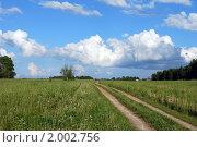 Купить «Проселочная дорога в поле», фото № 2002756, снято 30 мая 2010 г. (c) Глазков Владимир / Фотобанк Лори