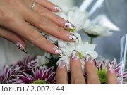 Купить «Женские пальцы с рисунком на ногтях над букетом хризантем», фото № 2007144, снято 23 сентября 2010 г. (c) Татьяна Белова / Фотобанк Лори