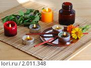 Купить «Ароматерапия», фото № 2011348, снято 25 августа 2010 г. (c) Литова Наталья / Фотобанк Лори