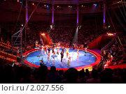 Купить «Арена цирка Никулина в Москве. Цирковое представление», фото № 2027556, снято 5 июня 2010 г. (c) Losevsky Pavel / Фотобанк Лори