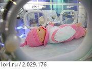 Купить «Игрушечный ребенок в медицинском боксе», фото № 2029176, снято 10 декабря 2009 г. (c) Losevsky Pavel / Фотобанк Лори
