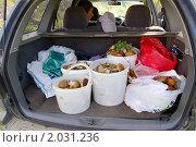 Купить «Полный багажник грибов», фото № 2031236, снято 12 сентября 2010 г. (c) Елена Ильина / Фотобанк Лори