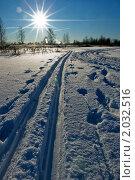 Купить «Зимний пейзаж. Лыжня», фото № 2032516, снято 12 января 2010 г. (c) Ольга Денисова / Фотобанк Лори