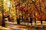 Осенний парк, фото № 2035296, снято 21 сентября 2010 г. (c) Хайрятдинов Ринат / Фотобанк Лори