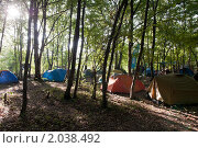 Утро, лагерь в лесу. Стоковое фото, фотограф Игорь Р / Фотобанк Лори