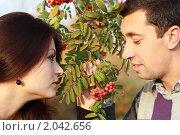 Купить «Мужчина и женщина между веткой с ягодами рябины», фото № 2042656, снято 6 октября 2010 г. (c) Alechandro / Фотобанк Лори