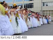 Купить «Много невест», фото № 2048488, снято 16 мая 2010 г. (c) Anna Kavchik / Фотобанк Лори