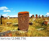 Купить «Хачкары, Норатус, Армения», фото № 2048716, снято 19 сентября 2010 г. (c) Татьяна Крамаревская / Фотобанк Лори