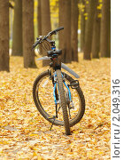 Велосипед. Стоковое фото, фотограф Raulin / Фотобанк Лори