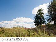Летний пейзаж. Стоковое фото, фотограф Ольга Полякова / Фотобанк Лори