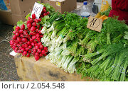 Купить «Прилавок с зеленью и редисом на сельскохозяйственной ярмарке», фото № 2054548, снято 16 октября 2010 г. (c) Анна Мартынова / Фотобанк Лори