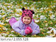 Купить «Первый снег!», фото № 2055128, снято 13 октября 2010 г. (c) Юлия Шилова / Фотобанк Лори
