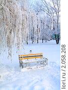 Купить «Скамейка в зимнем парке», фото № 2058208, снято 10 января 2010 г. (c) Сергей Яковлев / Фотобанк Лори