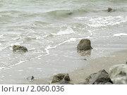 Купить «Берег океана», фото № 2060036, снято 25 марта 2019 г. (c) Елена Пупирина / Фотобанк Лори