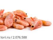 Замороженные креветки. Стоковое фото, фотограф Елена Блохина / Фотобанк Лори
