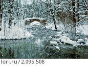 Купить «В зимнем парке», фото № 2095508, снято 9 января 2010 г. (c) Светлана Кудрина / Фотобанк Лори