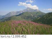 Гора Карио -хох, лето, Осетия. Стоковое фото, фотограф Судаков Валентин / Фотобанк Лори