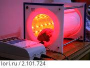 Купить «Лазер», фото № 2101724, снято 14 июня 2010 г. (c) Николай Комаровский / Фотобанк Лори