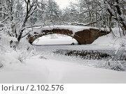 Купить «Старый мост над прудом в зимнем парке», фото № 2102576, снято 9 января 2010 г. (c) Светлана Кудрина / Фотобанк Лори