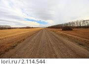 Купить «Сельская дорога», фото № 2114544, снято 6 ноября 2010 г. (c) Евгений Свитайло / Фотобанк Лори
