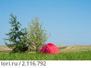Купить «Туристическая палатка в поле с дорогой и холмами», фото № 2116792, снято 24 июля 2010 г. (c) Бурков Андрей / Фотобанк Лори
