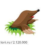Купить «Крот», иллюстрация № 2120000 (c) Мозымов Александр / Фотобанк Лори