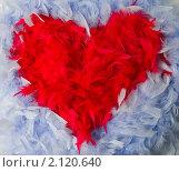Красное сердце из перьев. Стоковое фото, фотограф Роман Кокорев / Фотобанк Лори