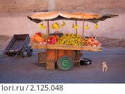Лоток на колесах с фруктами и кот на фоне стены (2010 год). Стоковое фото, фотограф Кравченко Юлия / Фотобанк Лори