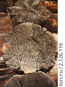 Купить «Фрагмент старого деревянного дома», фото № 2126116, снято 6 ноября 2010 г. (c) Галина Бурцева / Фотобанк Лори