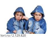 Купить «Маленькие братья-близнецы», фото № 2129820, снято 25 июня 2018 г. (c) Сергей Колесников / Фотобанк Лори