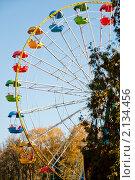 Колесо обозрения (2010 год). Стоковое фото, фотограф Рыжов Михаил / Фотобанк Лори