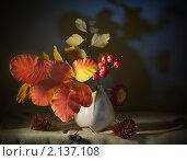 Вазочка осенними листьями и гроздью рябины - осенний натюрморт. Стоковое фото, фотограф Yury Ivanov / Фотобанк Лори