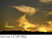 Золотой закат. Стоковое фото, фотограф Гаушкина Ирина Борисовна / Фотобанк Лори