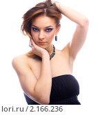 Купить «Портрет красивой девушки», фото № 2166236, снято 4 ноября 2008 г. (c) Serg Zastavkin / Фотобанк Лори