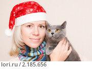 С британской кошкой на руках. Стоковое фото, фотограф Анастасия Шелестова / Фотобанк Лори