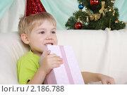 Купить «Счастливый мальчик с новогодним подарком», фото № 2186788, снято 9 ноября 2010 г. (c) Андрей Липко / Фотобанк Лори
