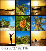Коллаж в мальдивском стиле (2010 год). Стоковое фото, фотограф Сергеева Дарья / Фотобанк Лори