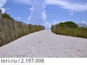 Тропинка к океану. Стоковое фото, фотограф Евгения Фурсова / Фотобанк Лори