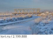 Купить «Железнодорожный мост через Снежку», фото № 2199888, снято 2 декабря 2010 г. (c) Александр Шилин / Фотобанк Лори