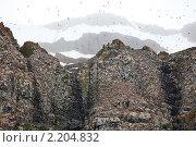 Купить «Земля Франца-Иосифа», фото № 2204832, снято 1 августа 2010 г. (c) Владимир Мельник / Фотобанк Лори