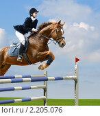 Купить «Конкур - молодая девушка прыгает на лошади через барьер», фото № 2205076, снято 16 мая 2009 г. (c) Абрамова Ксения / Фотобанк Лори