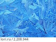 Купить «Зимний фон натуральный», фото № 2208944, снято 2 декабря 2010 г. (c) Сергей Громогласов / Фотобанк Лори