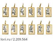 Купить «Коллекция золотых подвесок - 12 знаков зодиака», фото № 2209564, снято 4 декабря 2009 г. (c) ElenArt / Фотобанк Лори