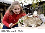 Девочка кормит кролика морковкой. Стоковое фото, фотограф Галина Хорошман / Фотобанк Лори