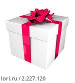 Купить «Подарок», иллюстрация № 2227120 (c) Сергей Куров / Фотобанк Лори